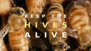keep the hives alive poster