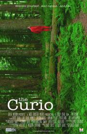 the curio vertical