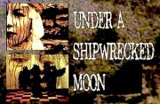 under a shipwrecked moon poster